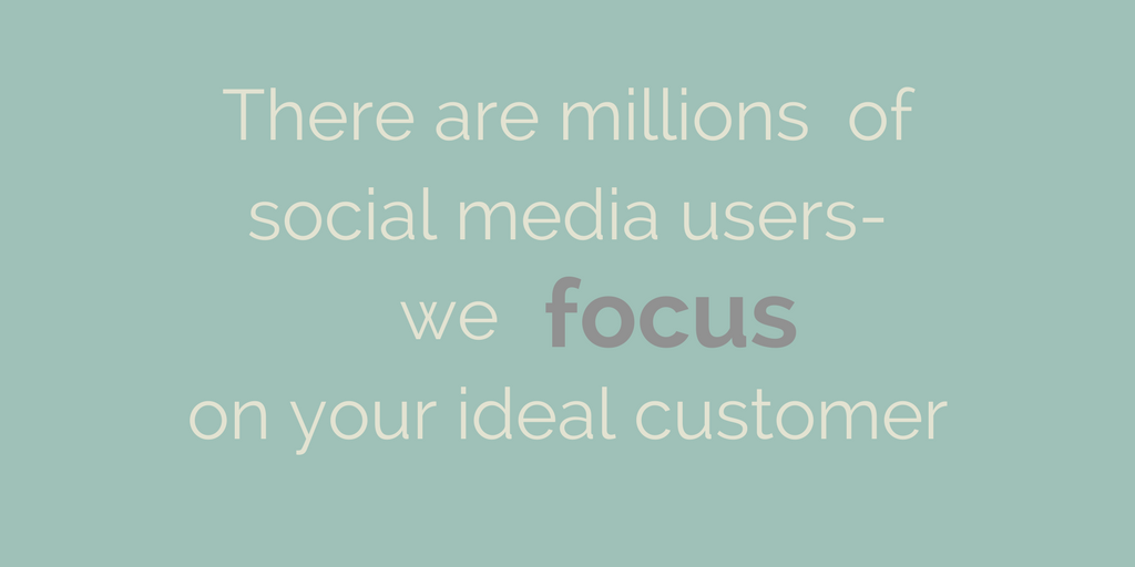 There are millions of social media users-we on your ideal customer